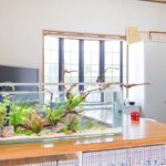 美容院の水槽レンタル